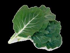 Couve Galega (Caldo Verde)