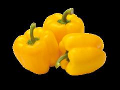 Pimento Amarelo